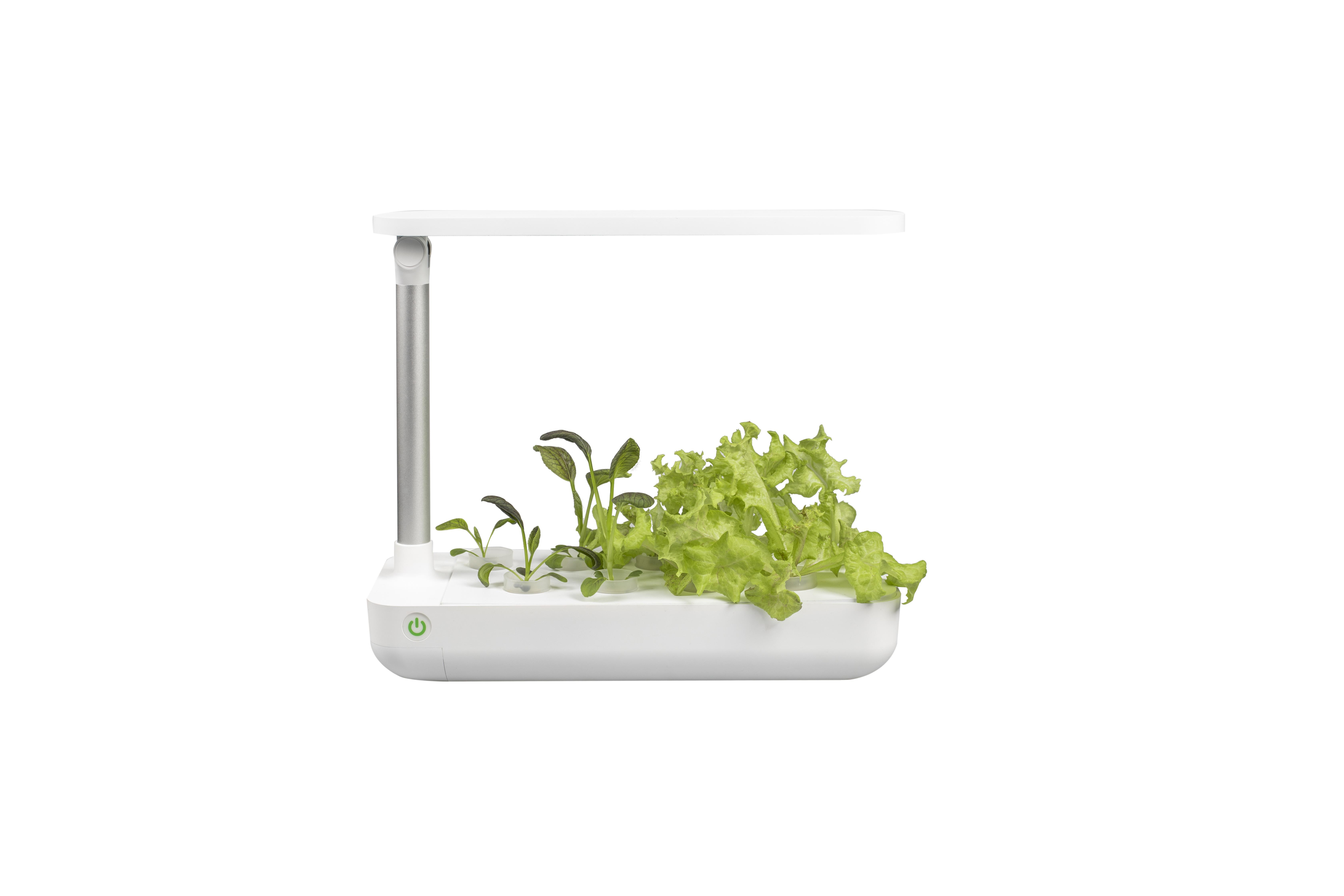 VegeBOX Table Vegebox planting machine with EU plug, white