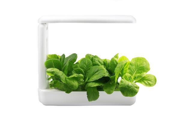 VegeBOX Kitchen Vegebox planting machine with EU plug, white